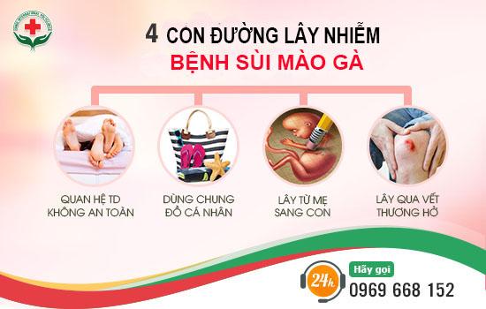 con-duong-lay-nhiem-sui-mao-ga
